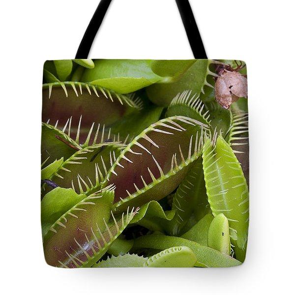 Tote Bag featuring the photograph Venus Flytrap by Ken Barrett