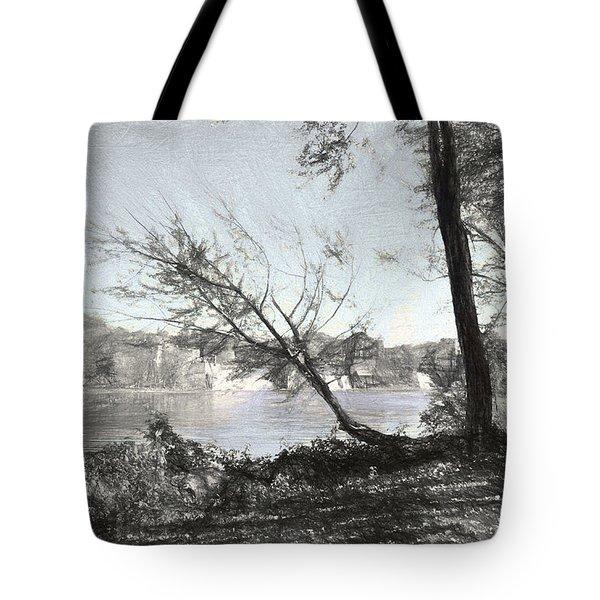 Vergennes Falls Digital Charcoal Tote Bag