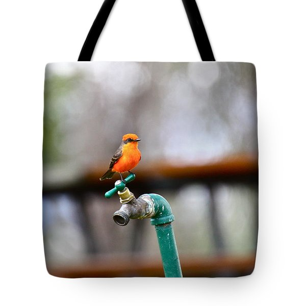 Vermilion Flycatcher Two Tote Bag