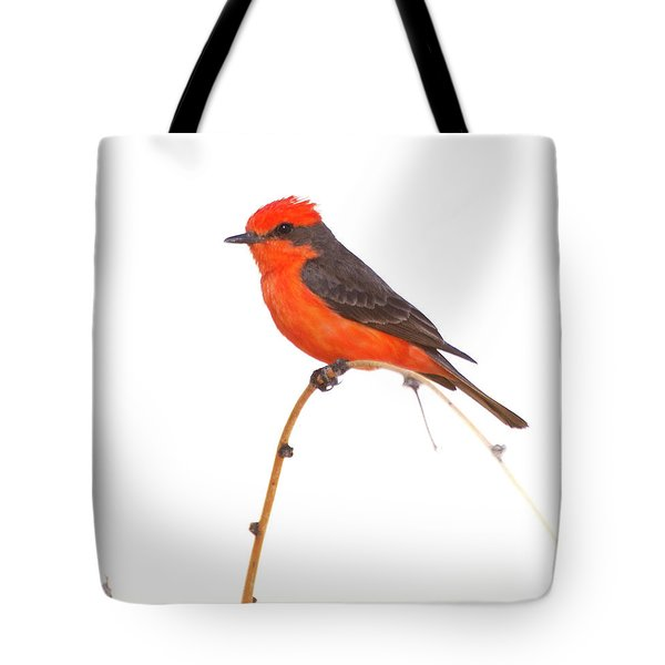 Vermillion On A Branch  Tote Bag