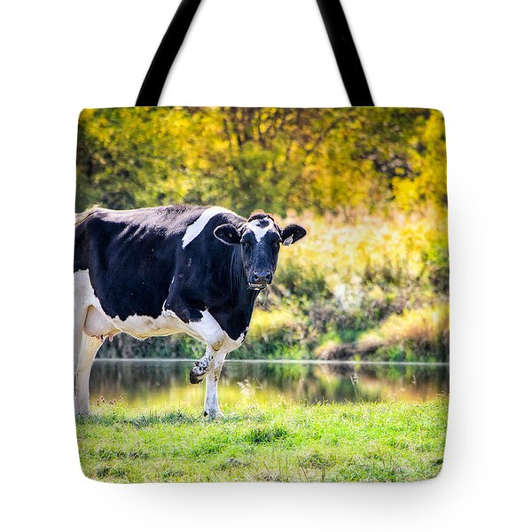 Vermont Farms.01 Tote Bag
