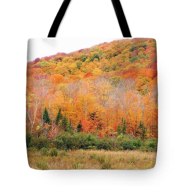 Vermont Foliage Tote Bag