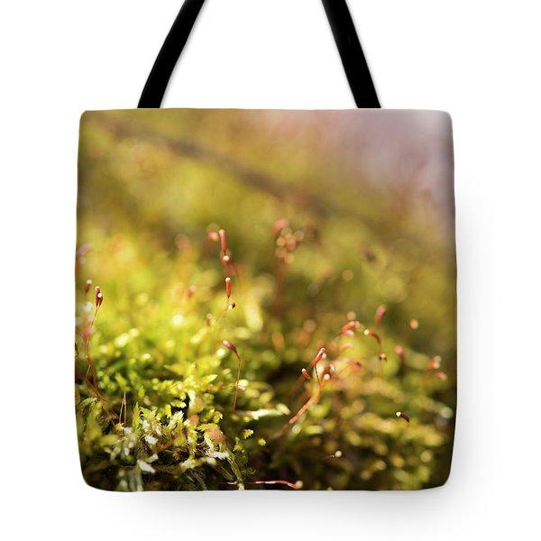 Vernal Impression Tote Bag