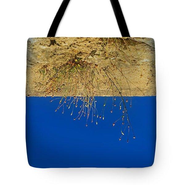 Vertigo II Tote Bag