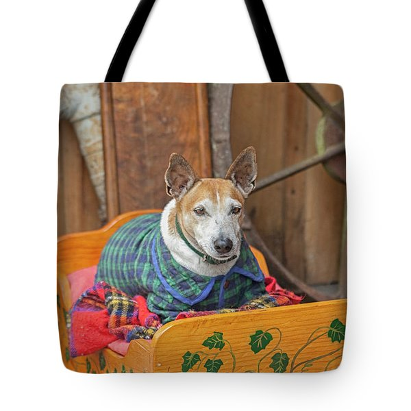 Tote Bag featuring the photograph Very Old Pet Dog In Clothes On Own Bed by Patricia Hofmeester
