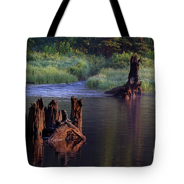 Vestige Of Grandeur  Tote Bag
