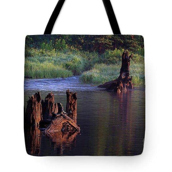 Vestige Of Grandeur  Tote Bag
