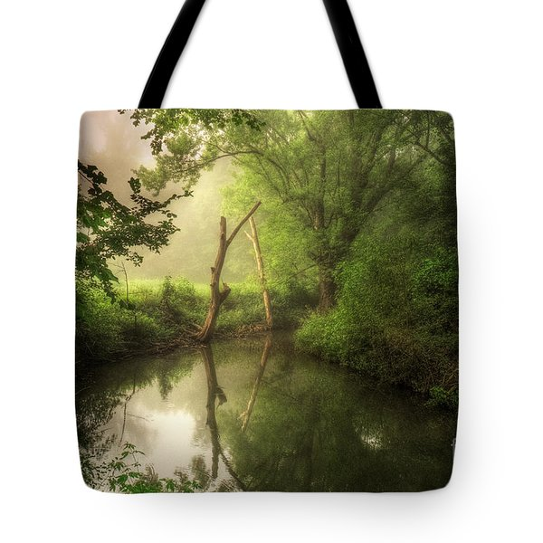 Veterans Of Ancient Storms Tote Bag
