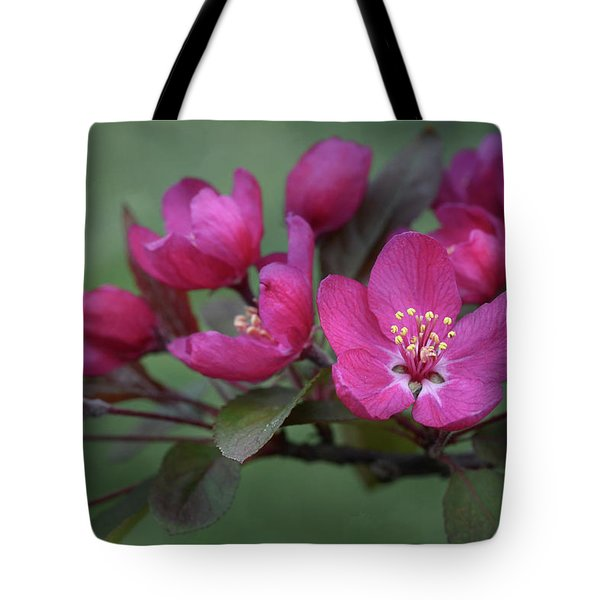 Vibrant Blooms Tote Bag by Ann Bridges