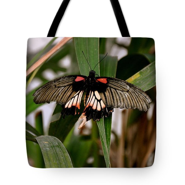 Vibrant Butterfly Tote Bag