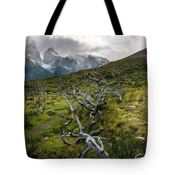 Vibrant Desolation Tote Bag
