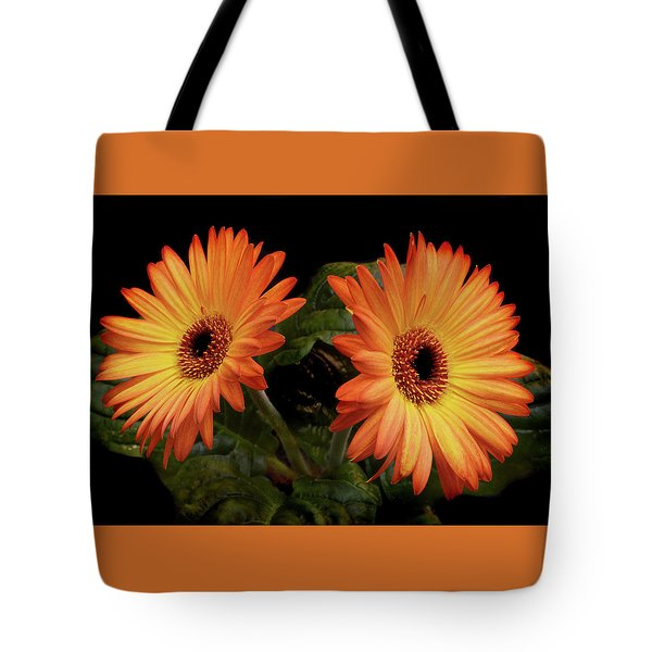 Tote Bag featuring the photograph Vibrant Gerbera Daisies by Terence Davis