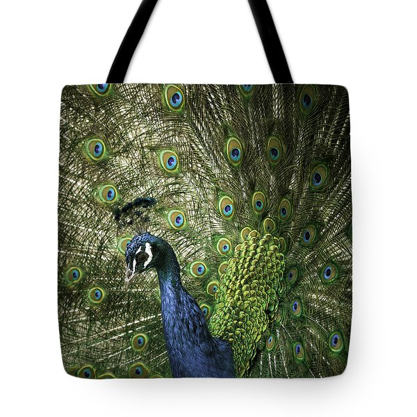 Vibrant Peacock Tote Bag by Jason Moynihan