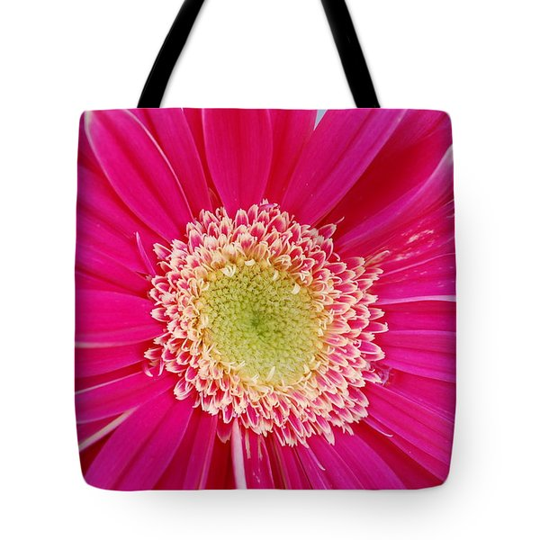 Vibrant Pink Gerber Daisy Tote Bag by Amy Fose
