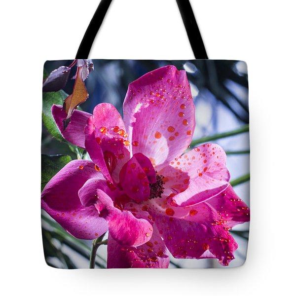 Vibrant Pink Rose Tote Bag