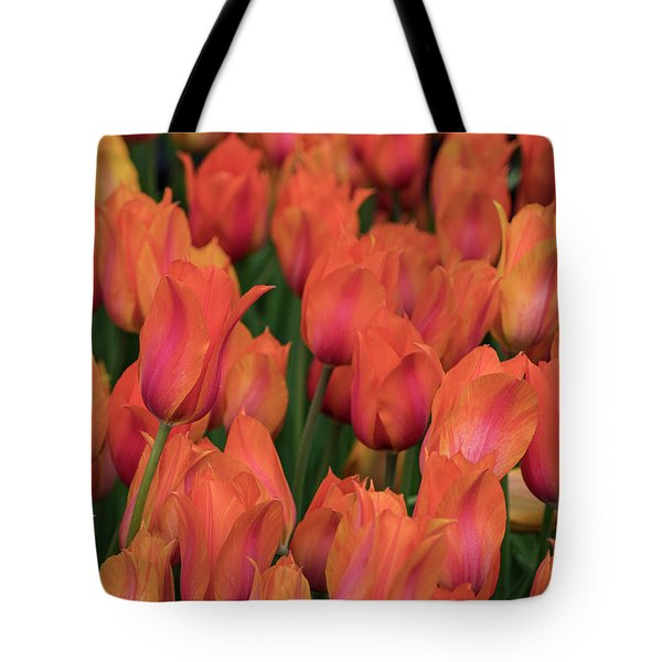 Tote Bag featuring the photograph Vibrant Whispers by Teresa Wilson