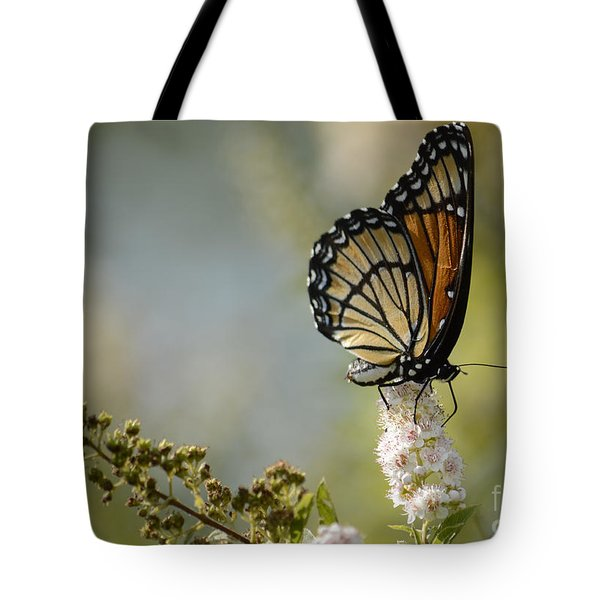 Viceroy Tote Bag by Randy Bodkins