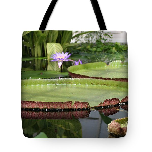 Tote Bag featuring the photograph Victoria Splendor  by Mary Lou Chmura