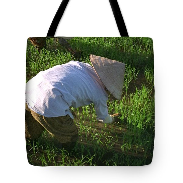 Vietnam Paddy Fields Tote Bag