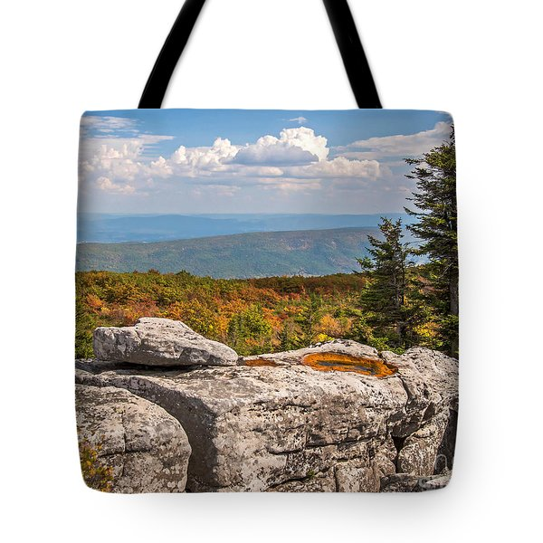 View From Bear Rocks 4173c Tote Bag
