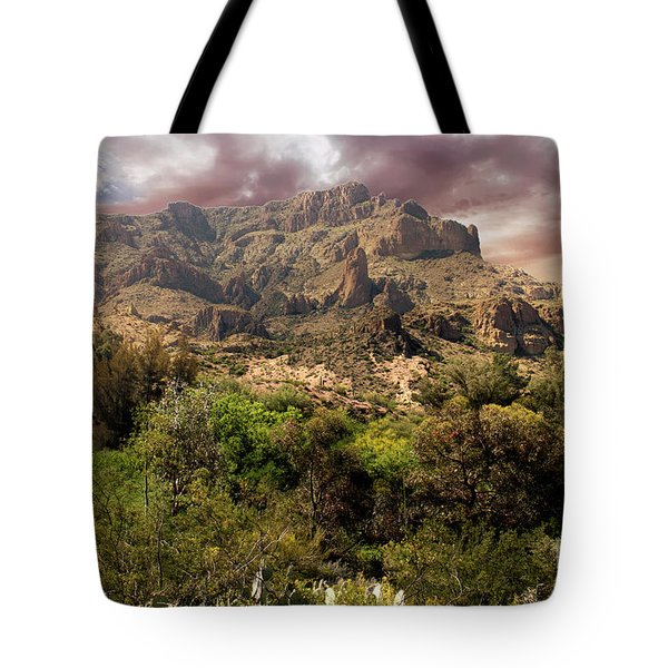 View From Boyce Thompson Tote Bag by Anne Rodkin