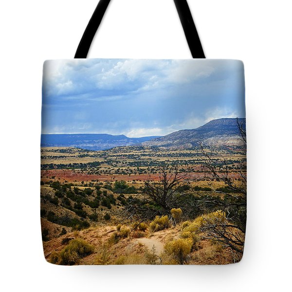 Tote Bag featuring the photograph View From Ghost Ranch, Nm by Kurt Van Wagner