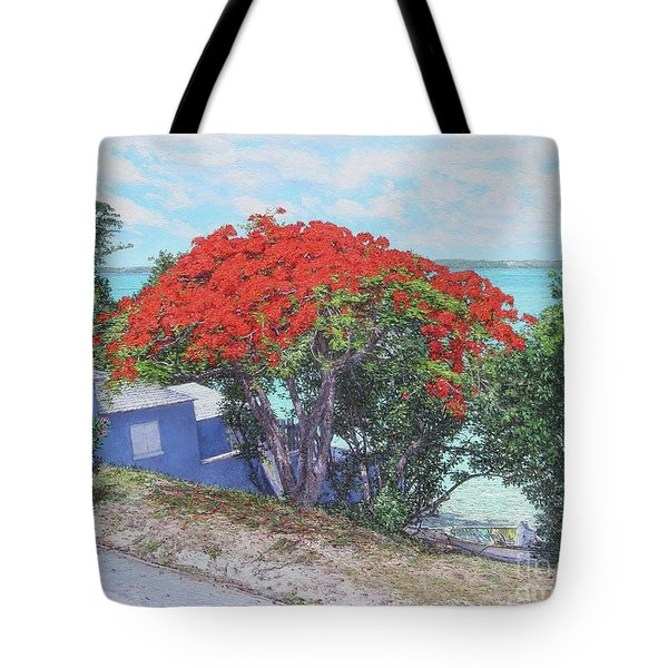 View From Hill Street Tote Bag