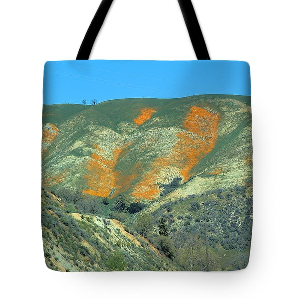 View From I - 5 Tote Bag