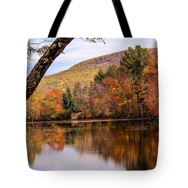 View From Manhan Rail Trail Tote Bag