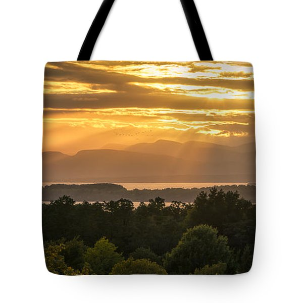 View From Overlook Park Tote Bag