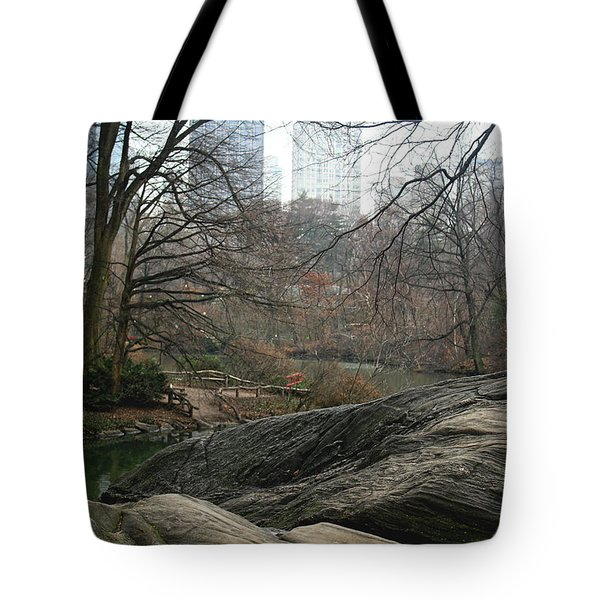 View From Rocks Tote Bag by Sandy Moulder
