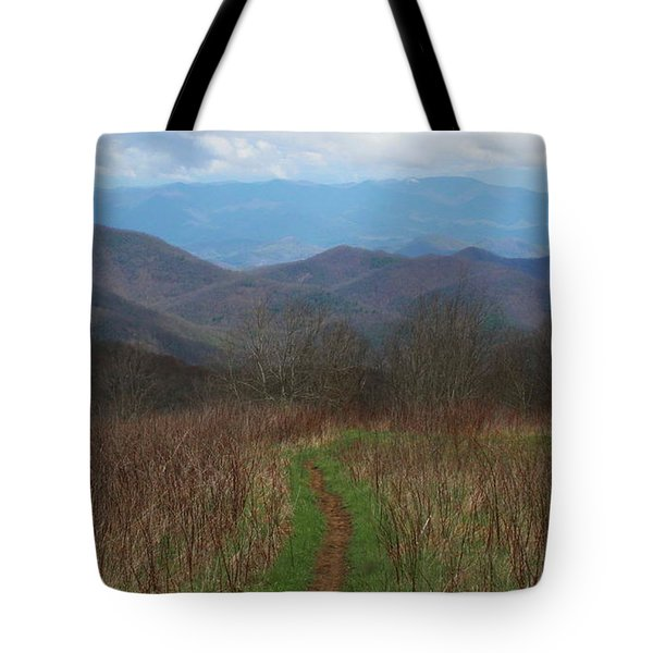 View From Silers Bald 2015a Tote Bag
