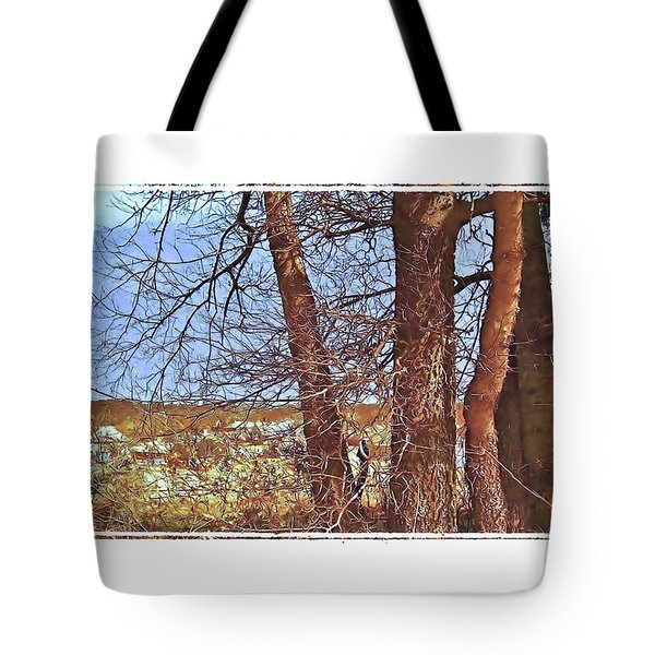 View From The Top Tote Bag by Shirley Moravec