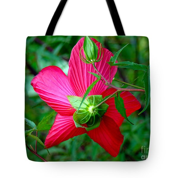 Tote Bag featuring the photograph View From Underneath by Sue Melvin
