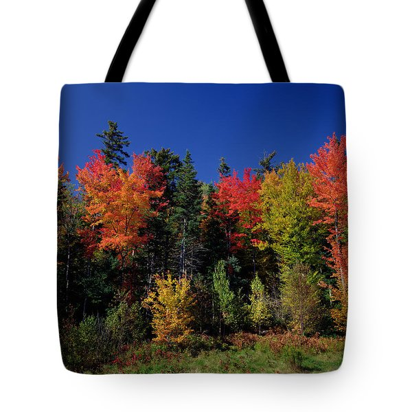 View In The Appalachian Mountains Tote Bag by View in the Appalachian Mountains