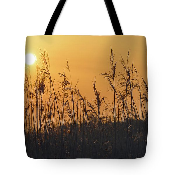Tote Bag featuring the photograph View Of Sun Setting Behind Long Grass A by Jacek Wojnarowski