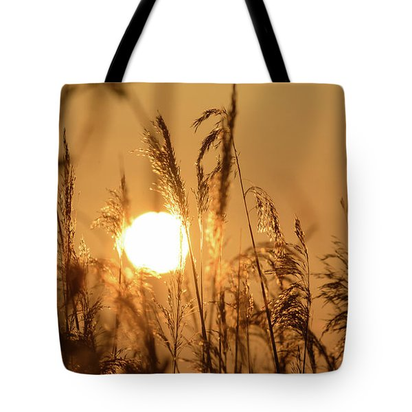 View Of Sun Setting Behind Long Grass B Tote Bag