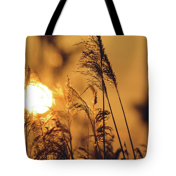 View Of Sun Setting Behind Long Grass C Tote Bag