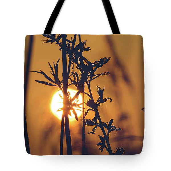 View Of Sun Setting Behind Long Grass D Tote Bag
