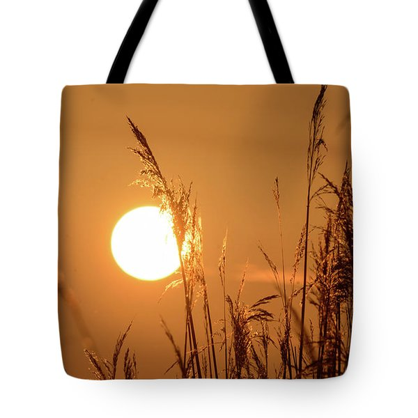 Tote Bag featuring the photograph View Of Sun Setting Behind Long Grass E by Jacek Wojnarowski