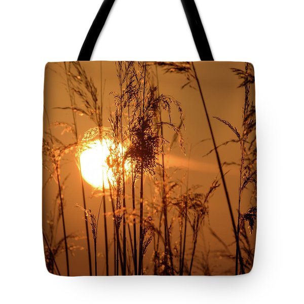 Tote Bag featuring the photograph View Of Sun Setting Behind Long Grass F by Jacek Wojnarowski