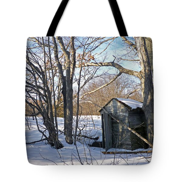 View Of The Past Tote Bag