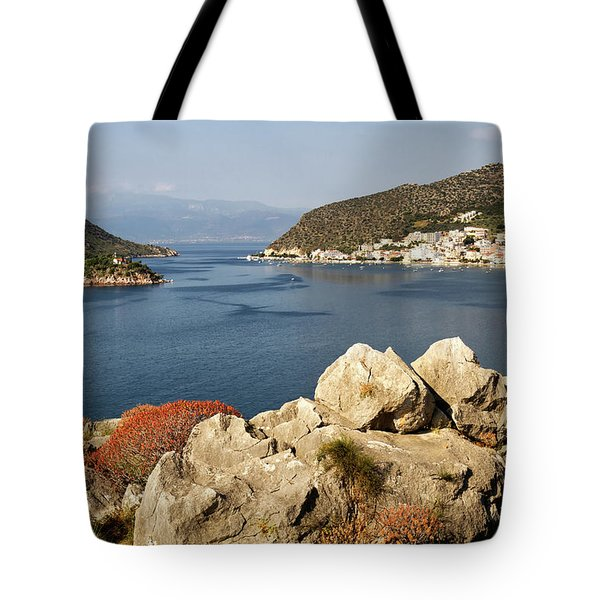 View Point Tote Bag by Shirley Mitchell