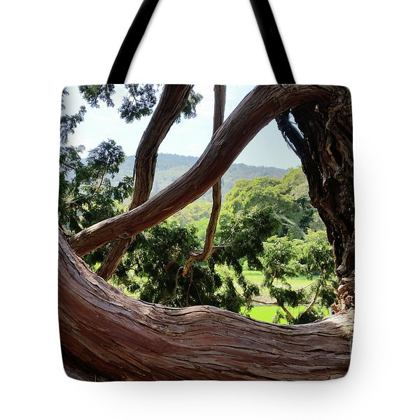 Tote Bag featuring the photograph View Through The Tree by Carol Lynn Coronios
