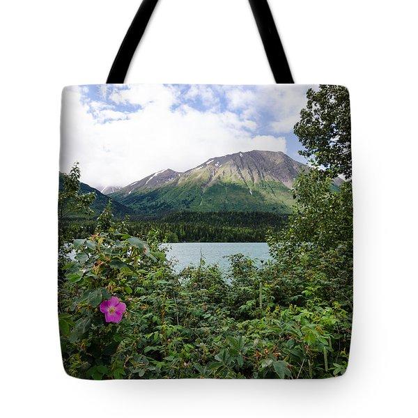 Views In Alaska Tote Bag