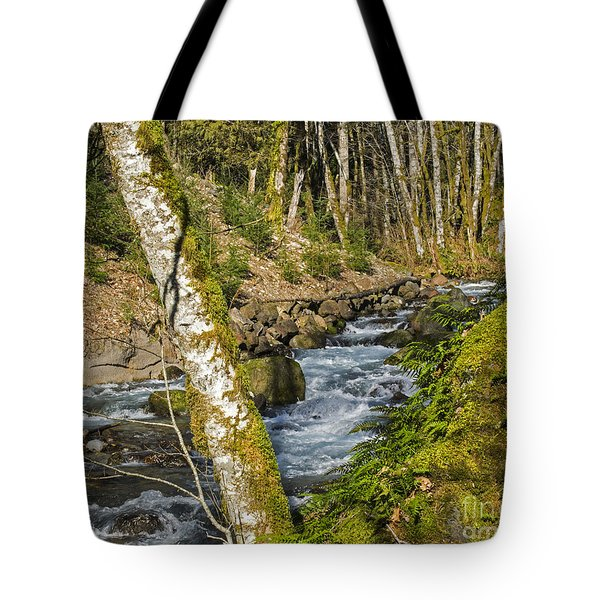 Views Of A Stream, I Tote Bag by Chuck Flewelling