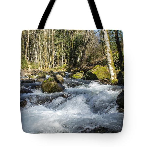 Views Of A Stream, IIi Tote Bag by Chuck Flewelling