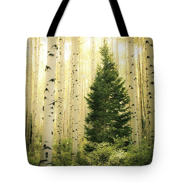 Tote Bag featuring the photograph Vigilant  by The Forests Edge Photography - Diane Sandoval