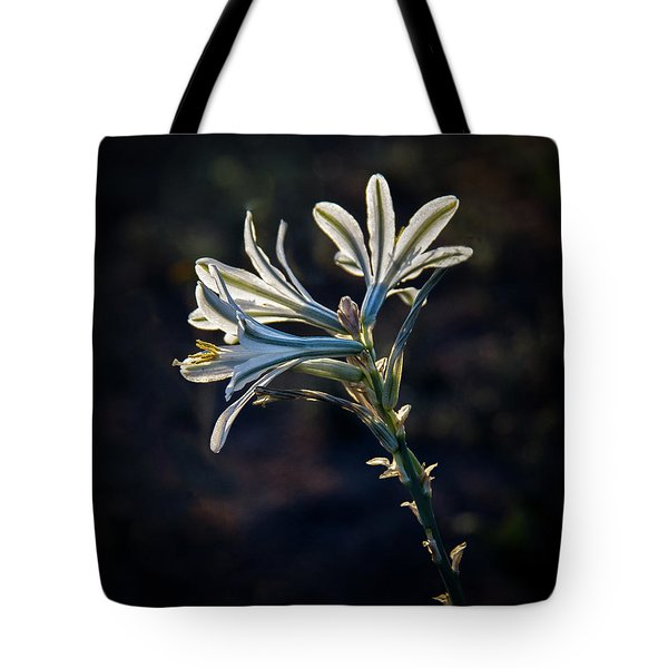 Vignetted Ajo Lily Tote Bag
