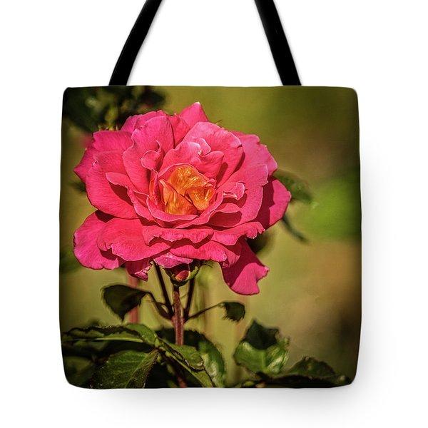 Vignetted  Rose Tote Bag